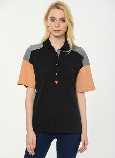 Polo Yaka Tişört-Lacoste